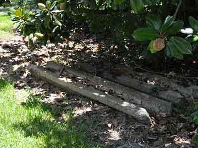 Mary Plantation Columns